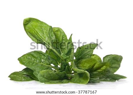 green spinach isolated on white