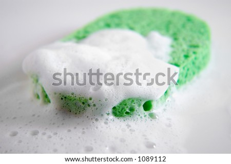 green sponge and bubbles