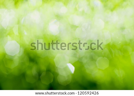 Green Spring background with bright glittering lights