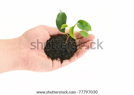 green sprout on hand men