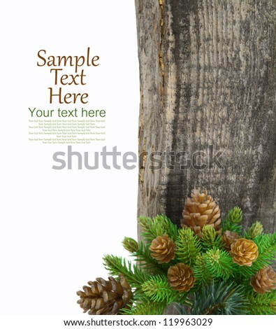 Green spruce branches and cones on wooden  background