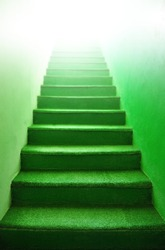 Green stairs - indoor green carpet step