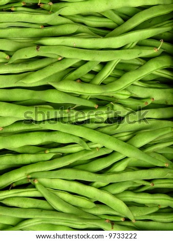 green string beans - stock photo