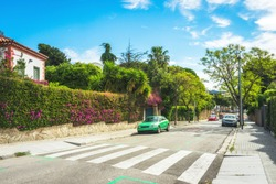 Green suburban scenic street with asphalt road for cars and cyclists, plants and green palms. Hot sunny summer day
