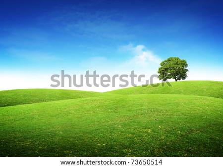 Green summer landscape scenic view.