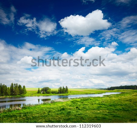 Green summer meadow and pond with blue cloudy sky