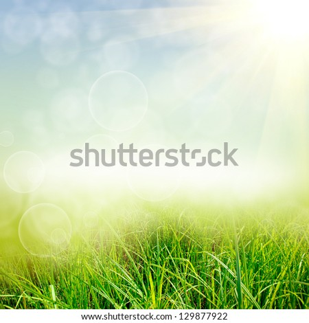 green summer nature background