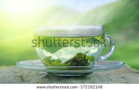 Green tea time. Green tea leaves at the bottom of the cup. Hot tea. Green tea on a background of mountains. #572182168