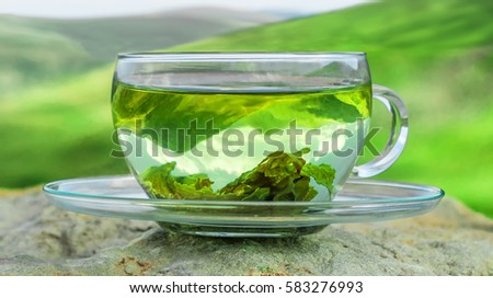 Green tea time. Green tea leaves at the bottom of the cup. Hot tea. Green tea on a background of mountains. #583276993