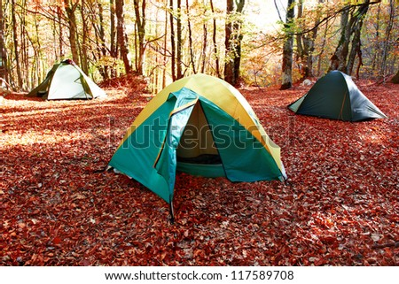 Green tent in the yellow autumn forest