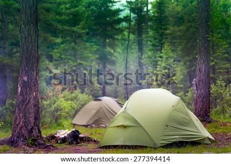 green tents are in the green misty forest #277394414