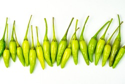 Green tiny chillies from thailand lineup isolated on white background