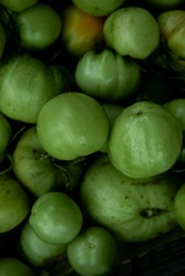 Green tomato (unripe) in wicker basket on wooden background. Unripe green tomato in bowl for fried dish or salted pickled vegetables. Raw green tomato on table for dinner