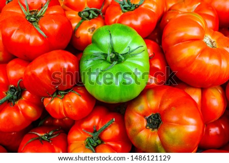 green tomatoes in red tomatoes, contrasting colors, green tomatoes, red tomatoes  #1486121129