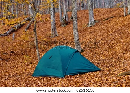 green touristic tent in a autumn forest