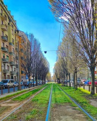 green tramways and spring sun