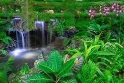 Green tree,flower,waterfall in the garden