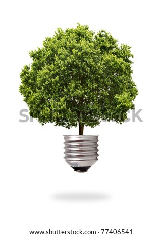 green tree growing out from a bulb