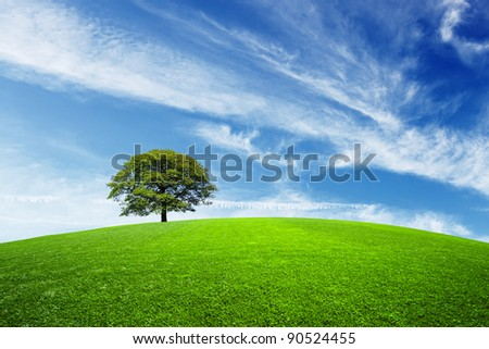 Green tree on green field