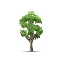 Green tree shaped in dollar sign isolated on white background