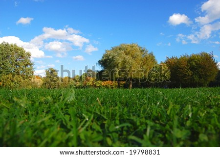green trees of a park at summer or autumn under blue sky - stock photo