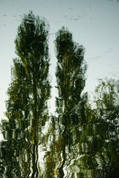 Green trees wavey abstract reflection in clear water on the River Thames, inspired by the impressionists