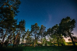 Green Trees Woods In Park Under Night Starry Sky. Night Landscape With Natural Real Glowing Stars Over Park. View From Eastern Europe At Spring Season.