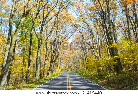 Green Tunnel section of Shenandoah National Park in autumn