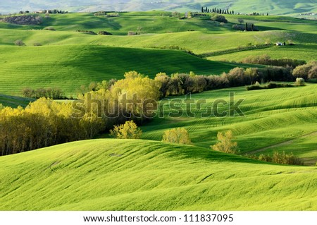 Green Tuscany landscape in spring time, Italy - stock photo