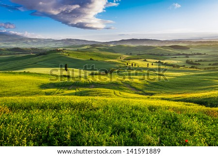 Green valley and mountains at sunset in Tuscany
