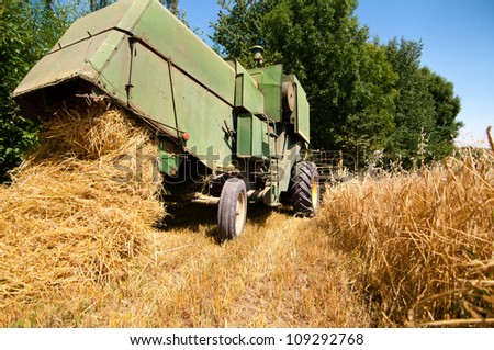 Green vintage combine harvesting crops of wheat