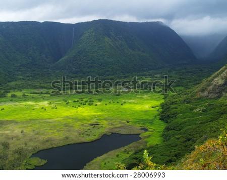 Green Waipio valley at Big Island, Hawaii