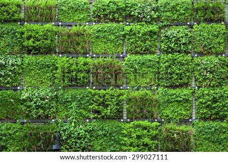 Free Photos Vertical Garden