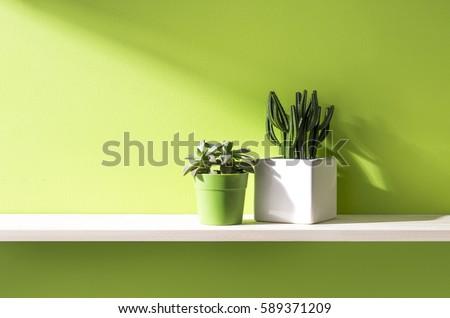 green wall and shelf - Shutterstock ID 589371209