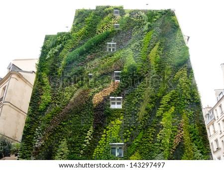 Green Wall On Exterior Of Building Imagen De Archivo Stock 143297497 Shutterstock