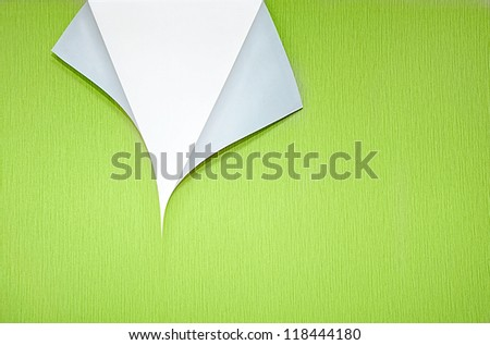 green wallpaper with curled corner and white copyspace