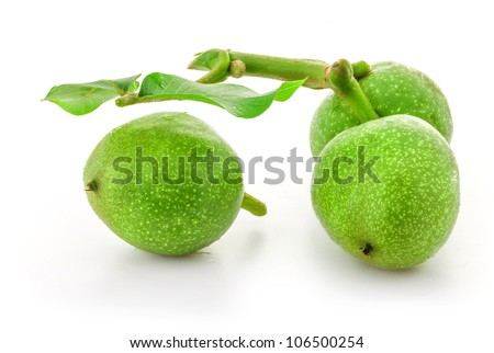 Green walnuts, isolated on white background