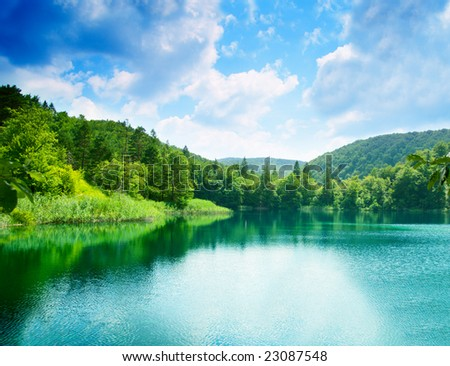 green water lake in forest