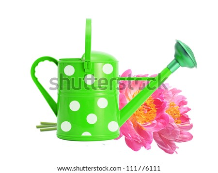 Green watering can and pink peony flowers isolated on white