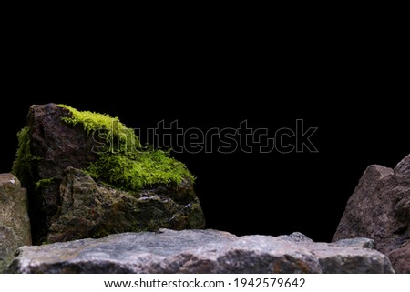 Green Wet Moss, Showing a Blurred Rock Foreground leading to a Natural Stone Mineral.