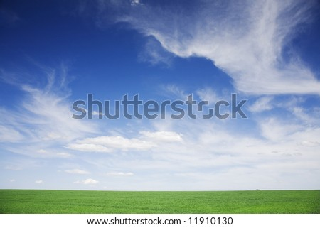 Green wheat field, white clouds, blue sky,