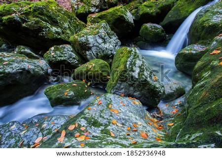 Green whirlpool (Zeleni vir) and Devil's passage (Vrazji prolaz) beautiful trip place close to Skrad, Croatia Photo stock ©