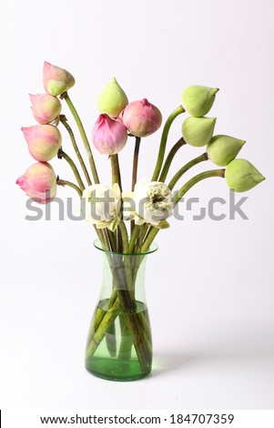 Free Photos White And Green Lotus Flower In Glass Green Vase