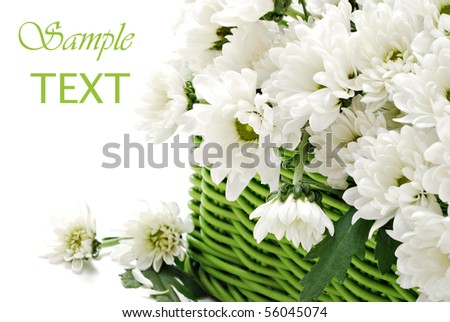 Green wicker basket filled with fresh cut flowers on white background with copy space.