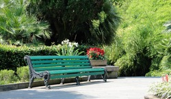 green wooden bench in the summer Park