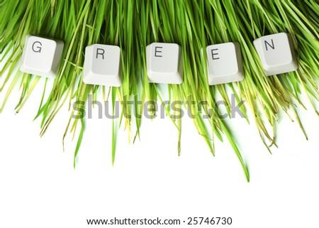 Green written in keyboard keys on grass