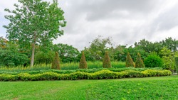 Greenery garden with geometric shape of bush and shrub, decoration flowering plant blooming on green grass lawn, trees on background under clouds blue sky, in a good care landscapes of public park