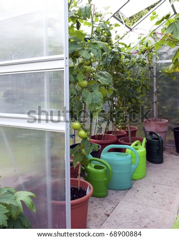 Greenhouse closeup