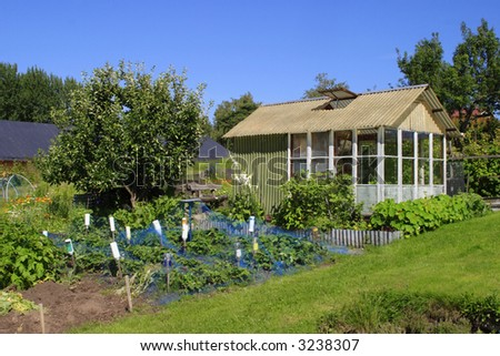 Greenhouse in a allotment garden.
