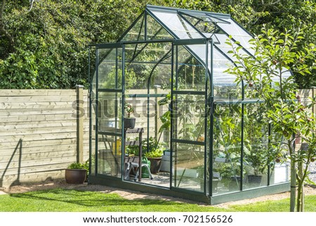 Greenhouse in a garden near a wooden fence in the summer with an apple tree Stock photo ©